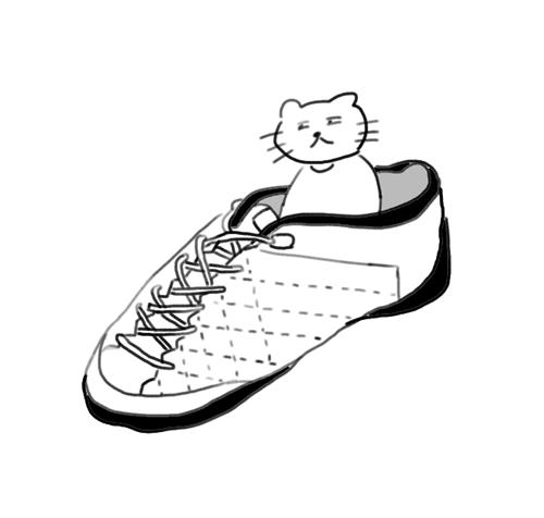 靴の中に猫がいる写真