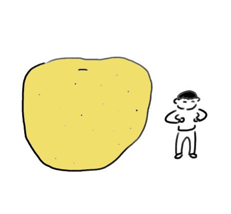 nasii