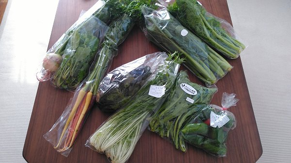 姫島渡船直売所で買った野菜の写真