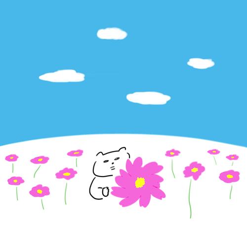 コスモスを見ている猫のイラスト